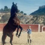 Andy con un caballo a riendas largas