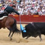Cuco en Valencia